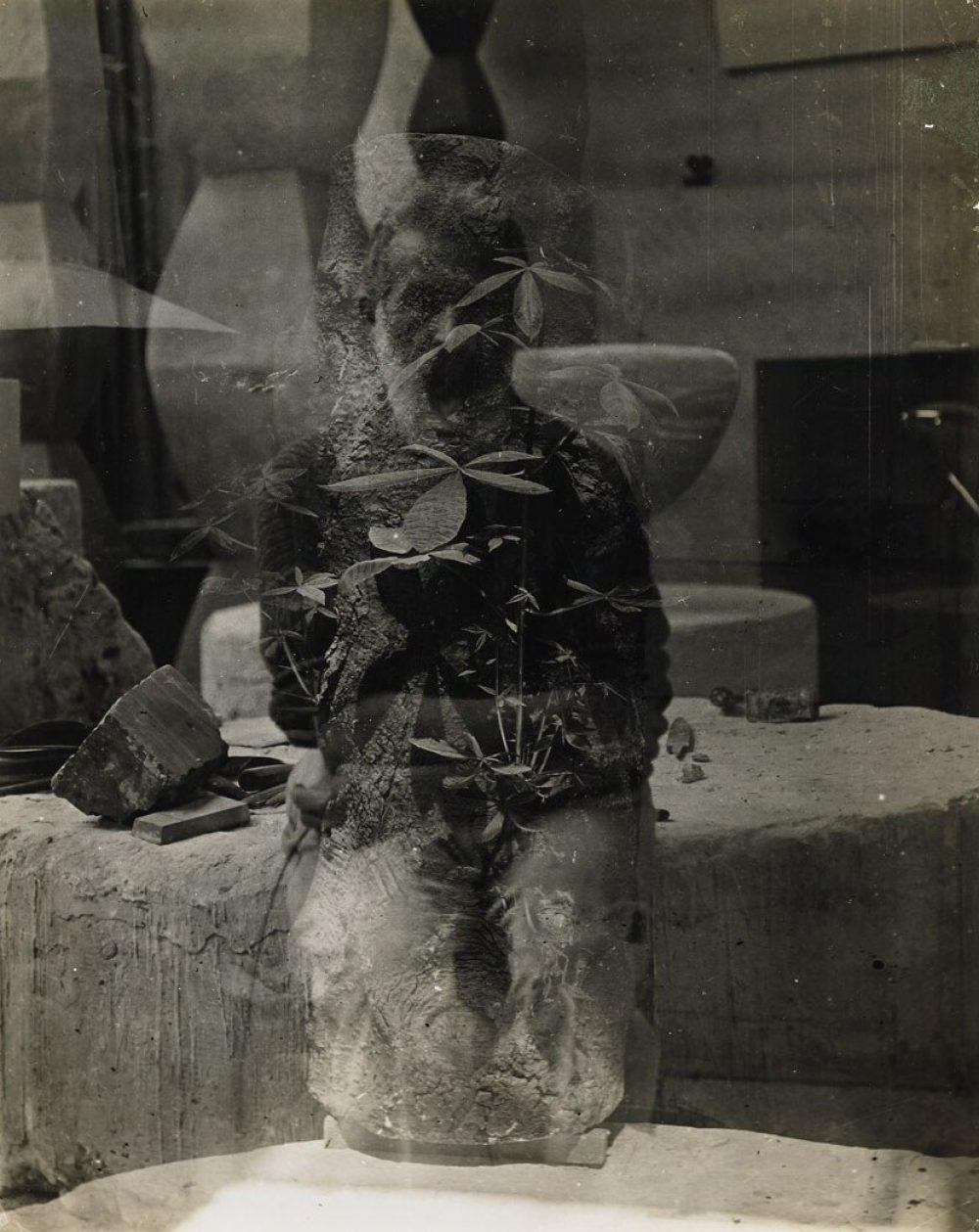 Autoportrait dans l'atelier et tronc d'arbre, Paris